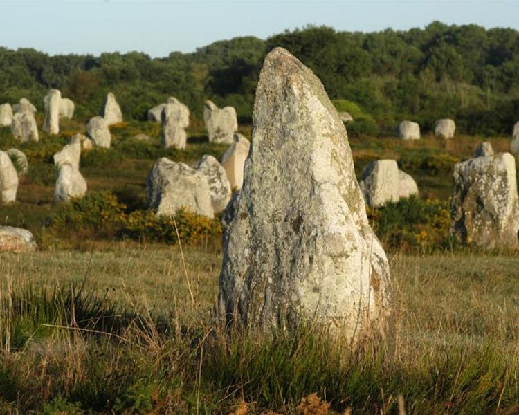 Carnac menhir nature brittany guest house